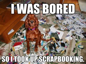 dogscrap